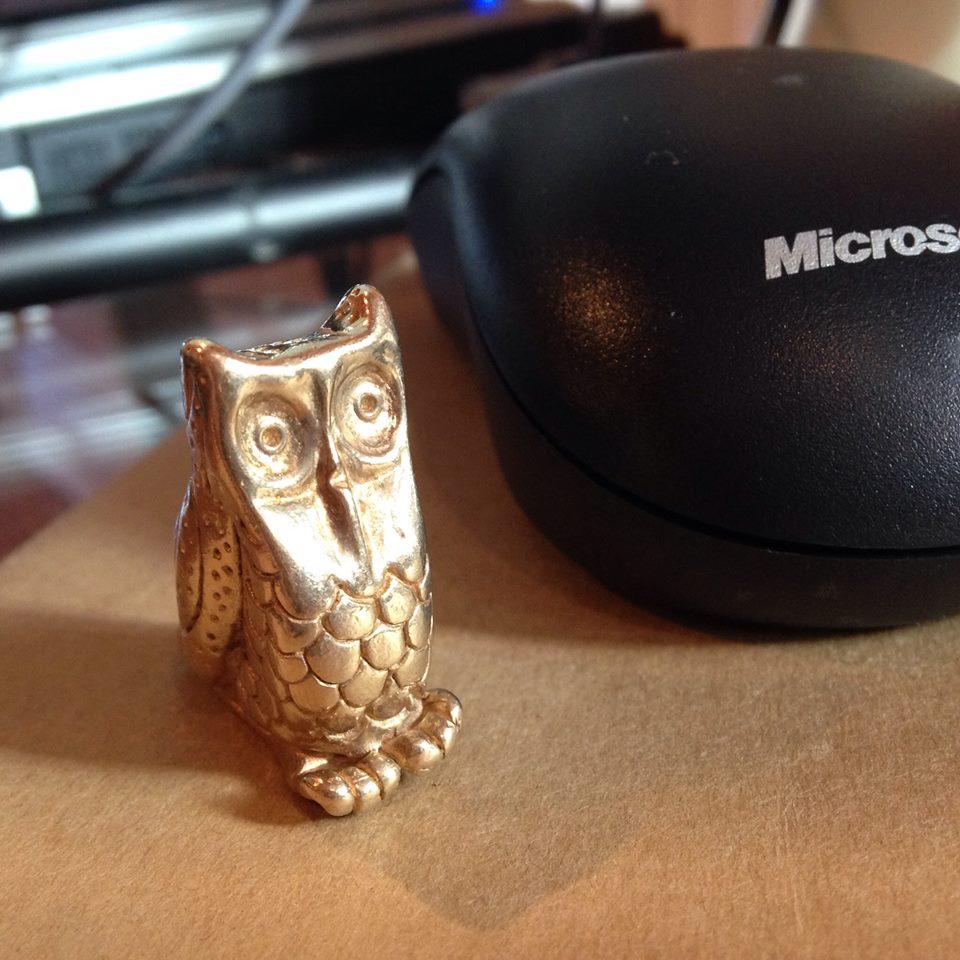 Owl, hard at work!