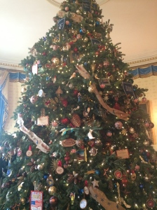 Ginormous tree!